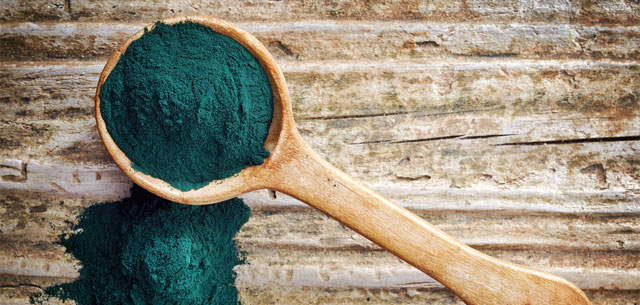 picture of spirulina