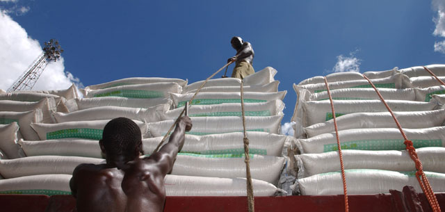 African Wheat Imports Look South