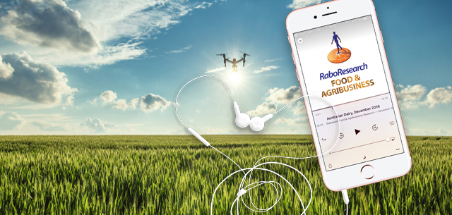 image of a drone flying over a wheat field