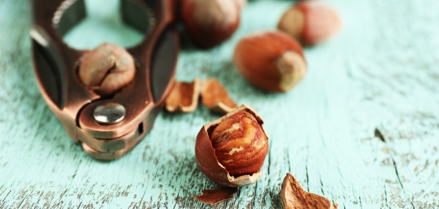 picture of hazelnuts with nutcracker