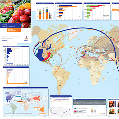 Picture of a map showing global vegetable trade flows