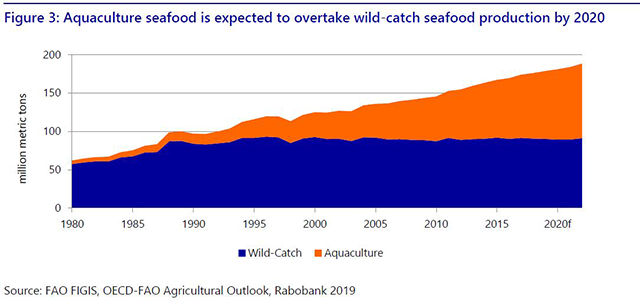 World Seafood Trade Map 2019